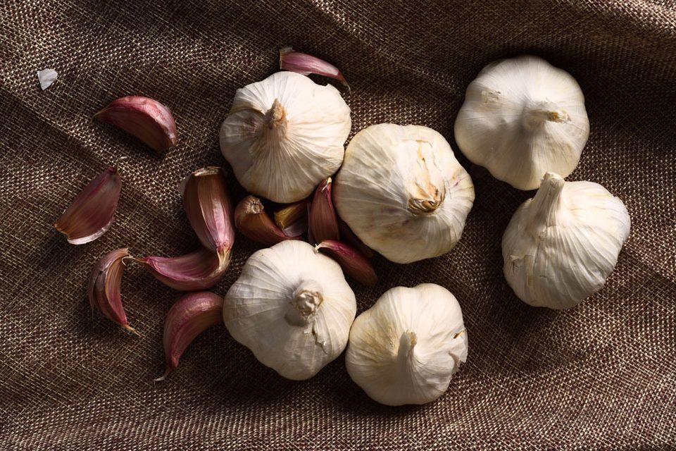 photo of garlic